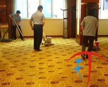 浦东地毯清洗